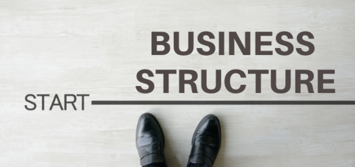 business structure and taxes